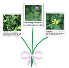 bouquet 002 copie