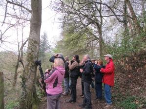 Un grand moment d'observation dans le vallon de Rochecradon ce mercredi 4 avril